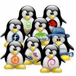 Tux-Linux-Distros-800x800