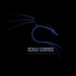Megjelent a Kali Linux 1.1.0 változat
